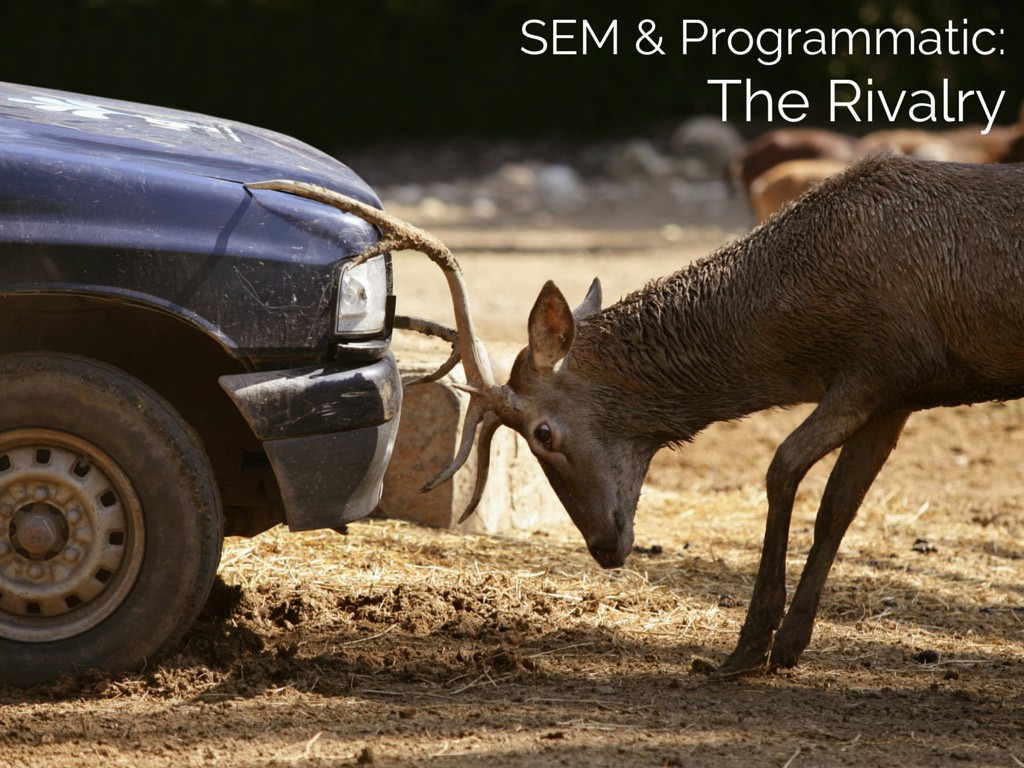 Search Engine Marketing and Programmatic Display Advertising