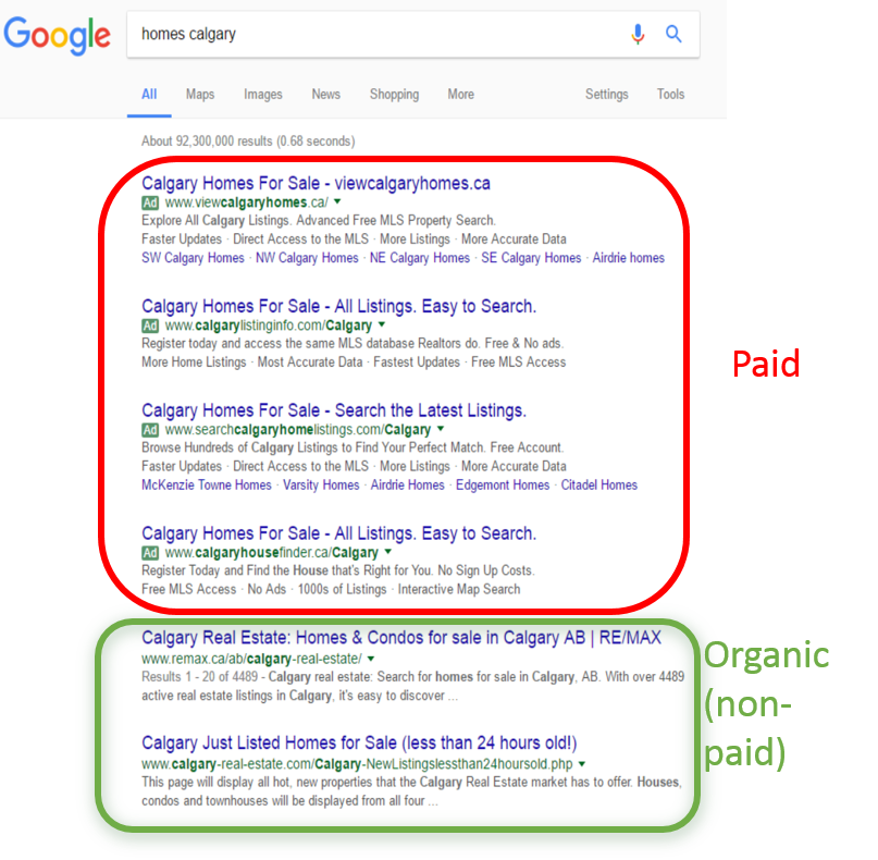 Organic and Paid Google Search Results