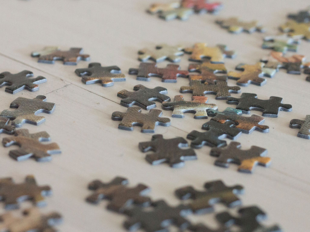 Pieces of a jigsaw puzzle